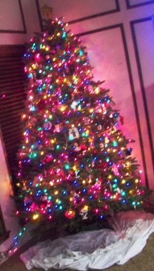 Tree2use