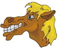Horse201